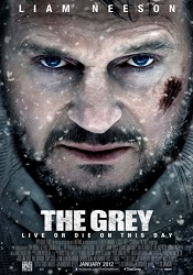 The grey psoter